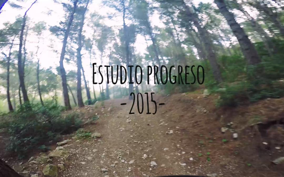 Estudio Progreso 2015